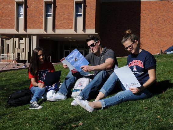 three young adult students sitting on the lawn at the university campus