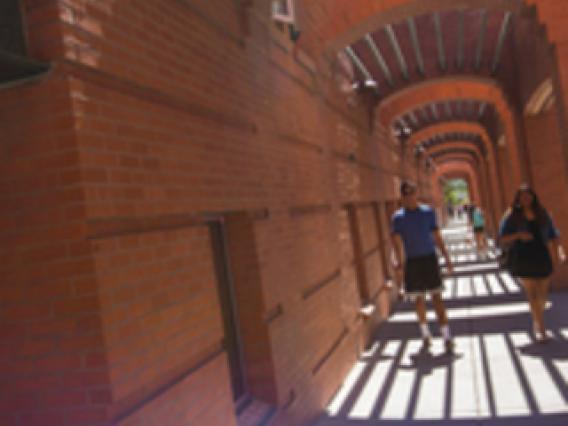 students walking on a sidewalk