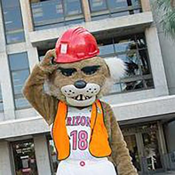 Wilber Wildcat in a construction hat